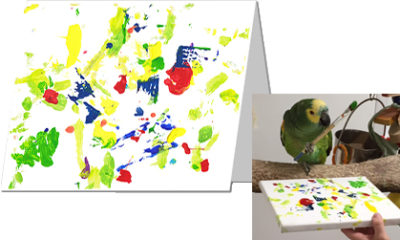 A greeting card with an abstract painting featuring bright green, yellow, blue, and red next to a photo of the Blue-Fronted Amazon parrot holding a paintbrush in his foot, creating the painting